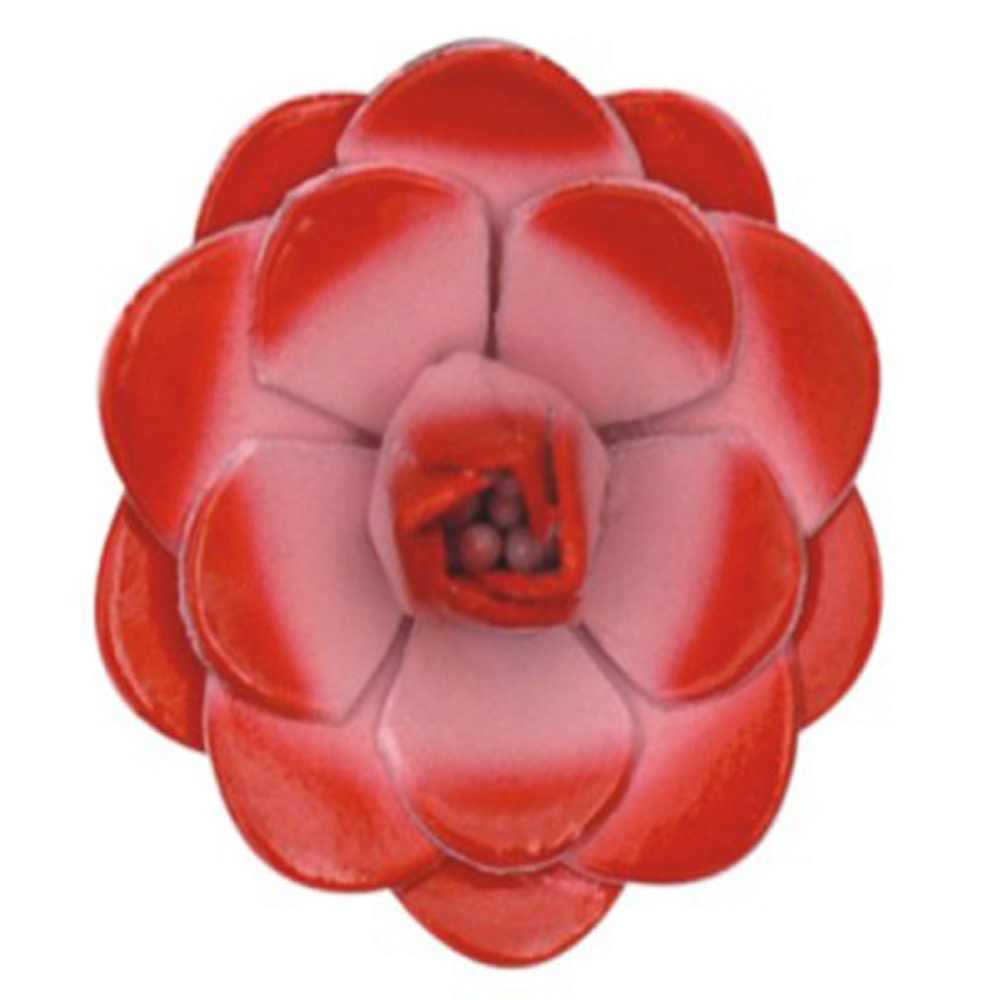 leather-flower